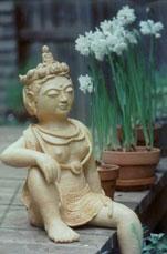 Kwan Yin Sitting